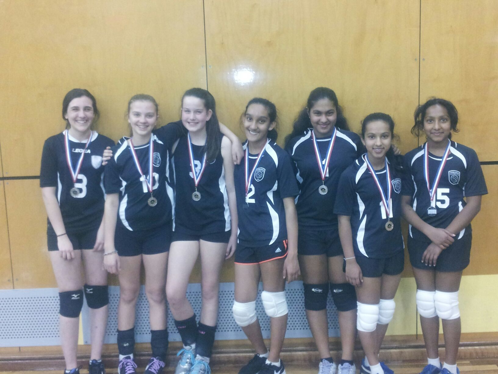 Volleyball Region So Wrv League Silver Medalists